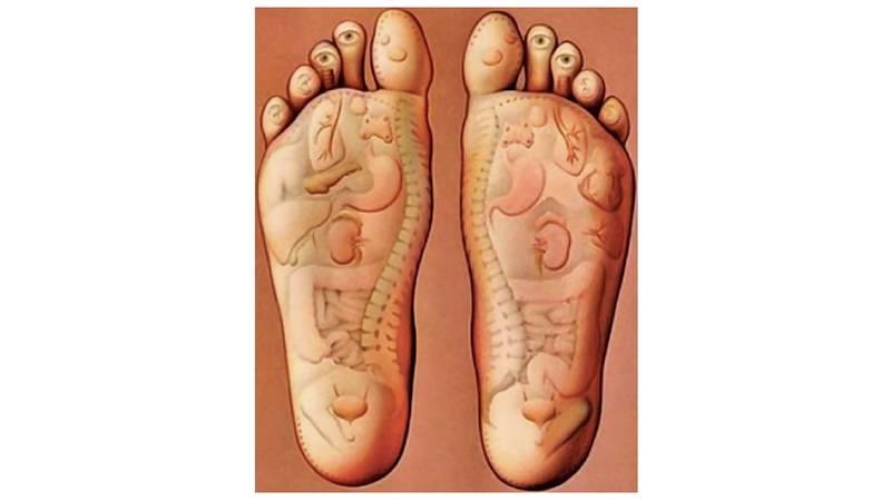 الأقدام تعبر عن أمراض الجسم صحيفة الخليج