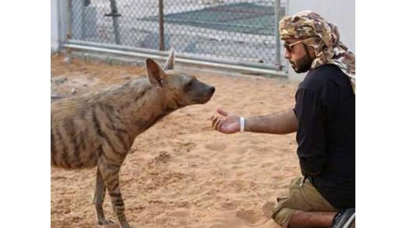 تربية الحيوانات المفترسة هواية تهدد حياة الناس صحيفة الخليج