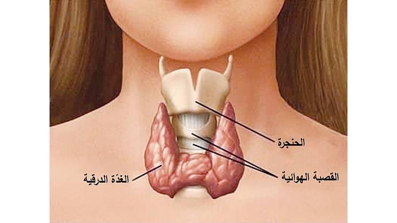خلل الغدة الدرقية يسبب حصى الكلى ويضر بمستوى الخصوبة عند النساء صحيفة الخليج